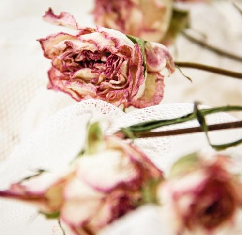 Valentines flowers-114