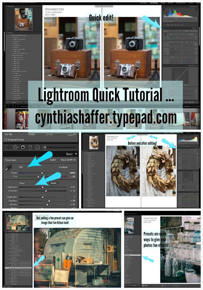 Lightroom tutorial rev pin